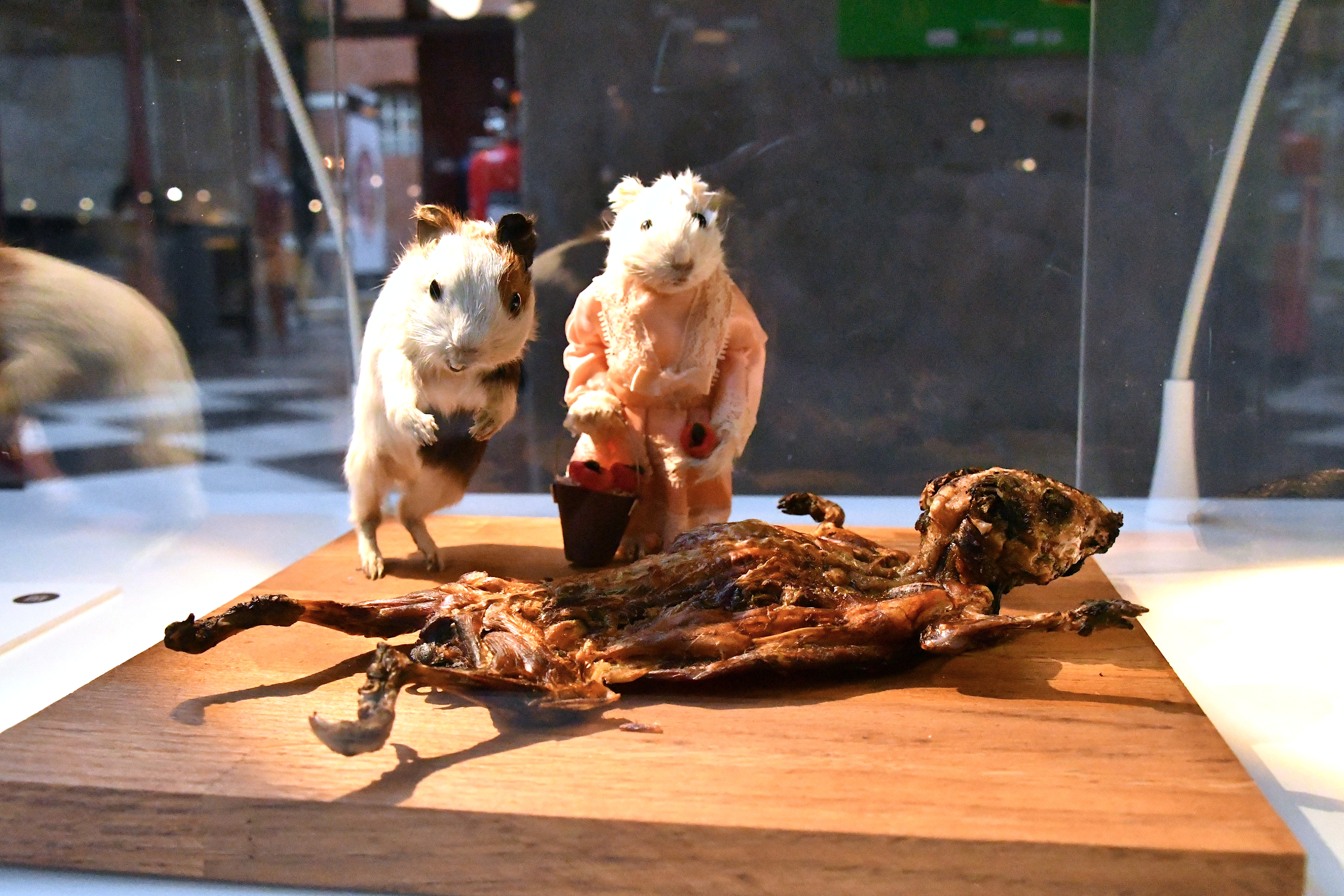 Guinea pigs, served as a traditional Peruvian Andes food, are displayed at the Disgusting Food Museum in Malmo