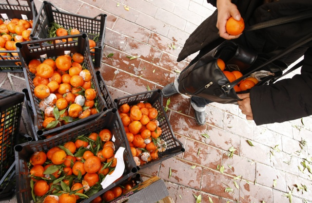 A woman picks up discarded fruits after a market in Nice