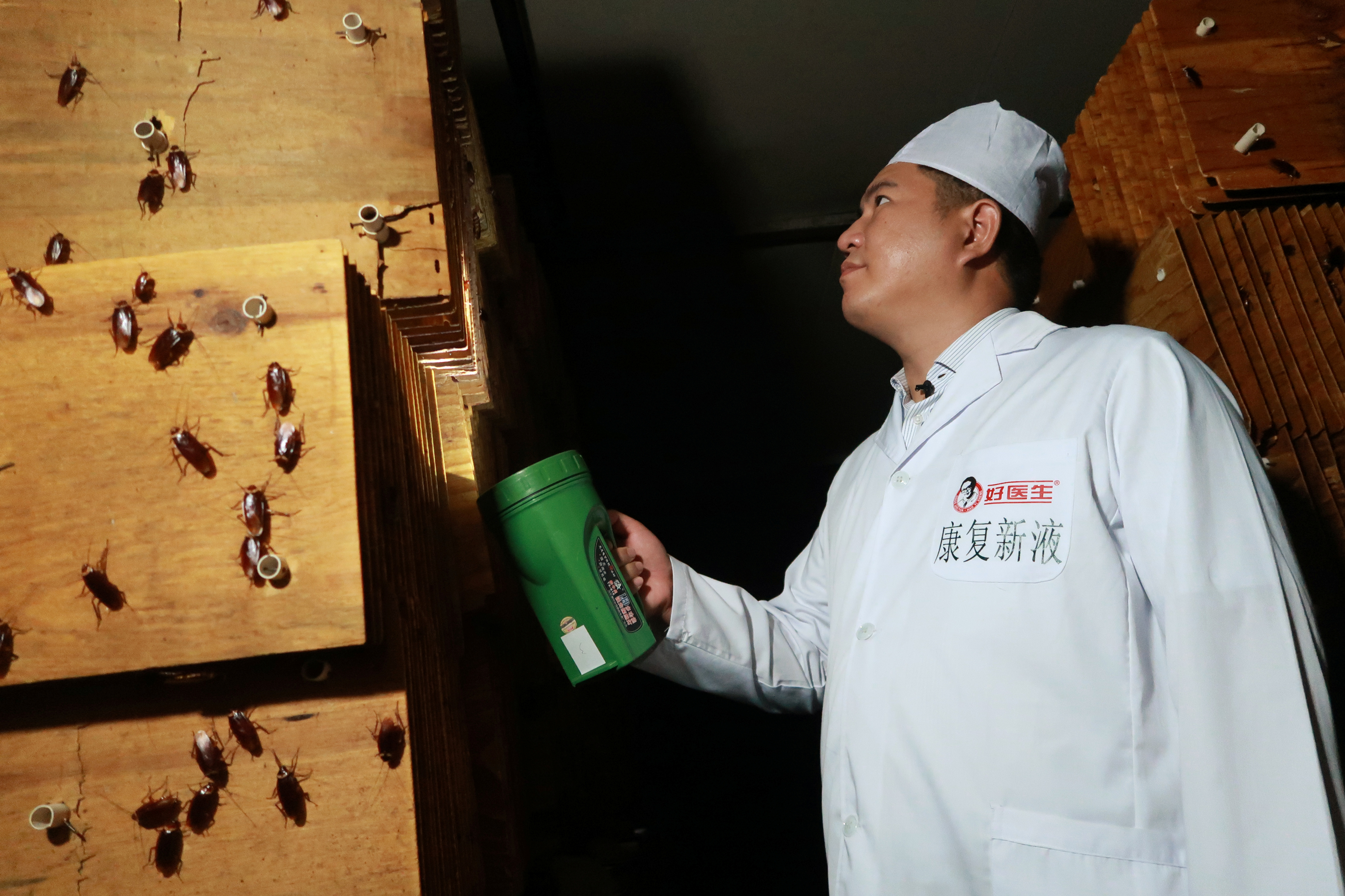 Staff member shows cockroaches in shelves to the camera at a farm operated by pharmaceutical company Gooddoctor in Xichang