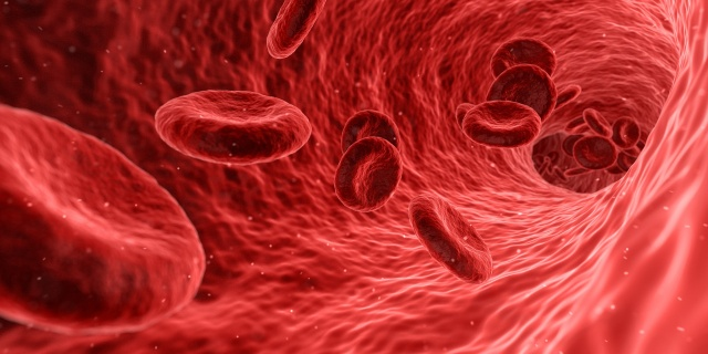 Showing people their own arteries might improve heart health